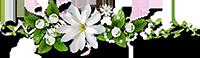 ดอกไม้ประดับหัวข้อย่อยของร้านขายชุดแต่งงาน