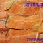ปลาแซลมอนนอร์เวย์ หั่นชิ้น thumbnail 1