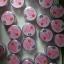 Aura Pink Two ครีมทาปากแดง ปากชมพู นมชมพู Lip & Nipple Cream thumbnail 240