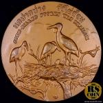 เหรียญทองแดง เหรียญที่ระลึกประจำจังหวัดปทุมธานี (ขนาด 7 ซม.)