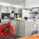 วิธีกําจัดหนู วิธีไล่หนู ในบ้านและอาคารง่ายๆ ด้วย เครื่องไล่หนู Clear Mice