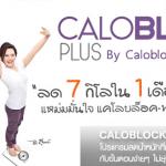 Caloblock Plus 8 แคโลบล็อค พลัส 8 อาหารเสริมลดน้ำหนัก แหม่ม จินตหรา ราคาถูก ส่ง EMS ฟรี