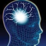 10 สารอาหารบำรุงสมอง